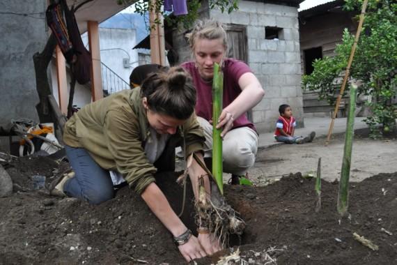 Participants_planting