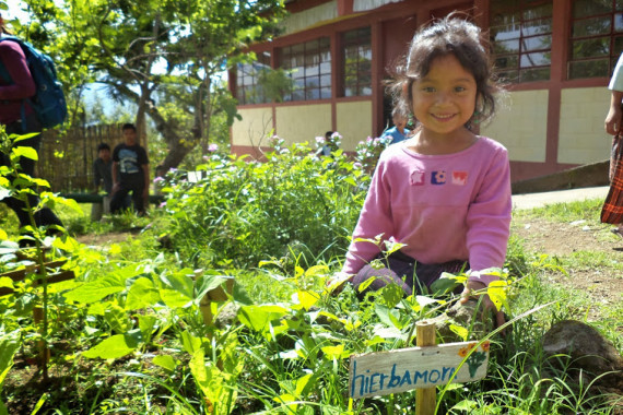 school garden great!